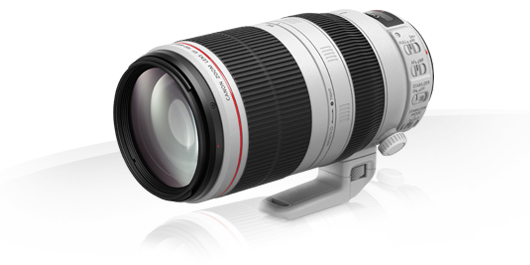 EF 100-400mm f 4.5-5.6L IS II USM